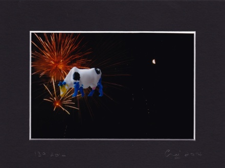 the cow that jumped over the moon ... in a field of firework flowers